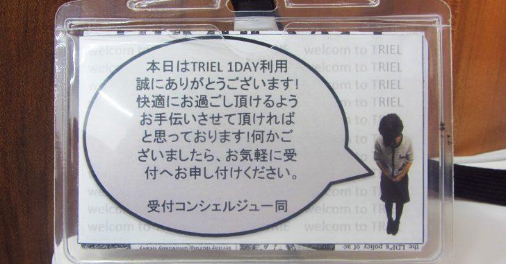 TRIELの1DAYカード