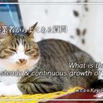 自分を着実・継続的に成長させていく姿勢